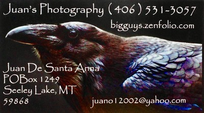 Juan's Photography 406-531-3057 Juan De Santa Anna P.O. Box 1249 Seeley Lake, MT 59868 website: bigguys.zenfolio.com email: juano12002@yahoo.com