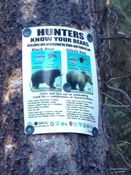 Hunters - Know Your Bears - Sign on a tree